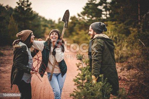 629376126istockphoto Preparing for Christmas 1045505044
