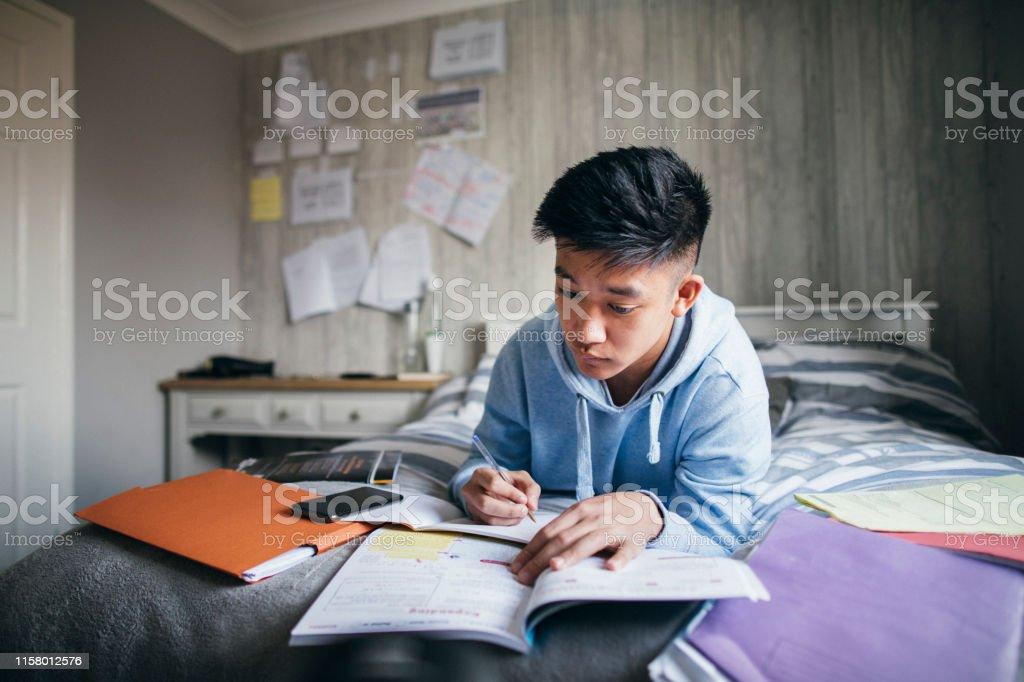 시험 준비 - 로열티 프리 16-17 살 스톡 사진