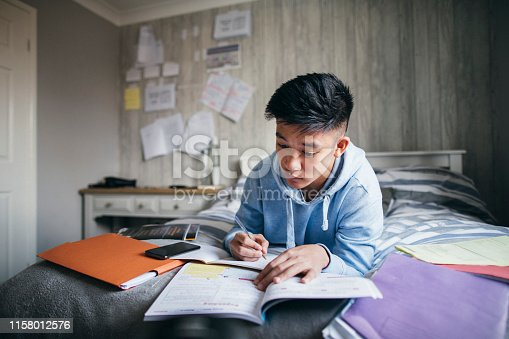 istock Preparing for Exams 1158012576