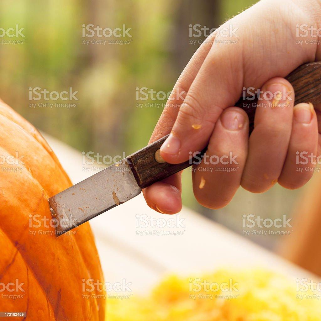 Preparing Pumpkin for Halloween royalty-free stock photo
