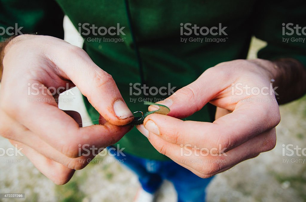 Preparing The Bait For Fishing royalty-free stock photo