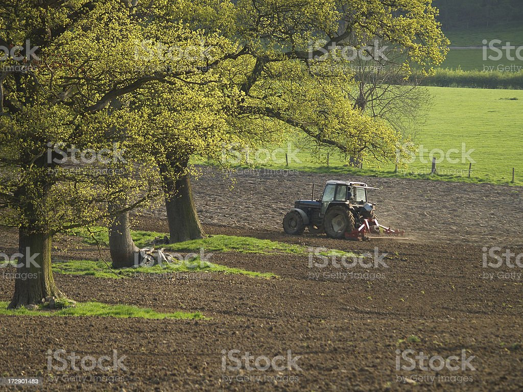 Preparing the field for planting royalty-free stock photo