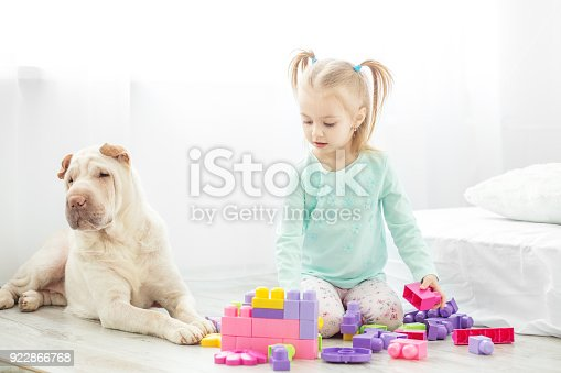 istock A preschool child is played with toys in a room with a dog. The concept of lifestyle, childhood, upbringing, family, pets. 922866768