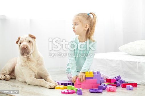 istock A preschool girl is playing toys in a room with a dog. The concept of lifestyle, childhood, upbringing, family, pets. 922866758