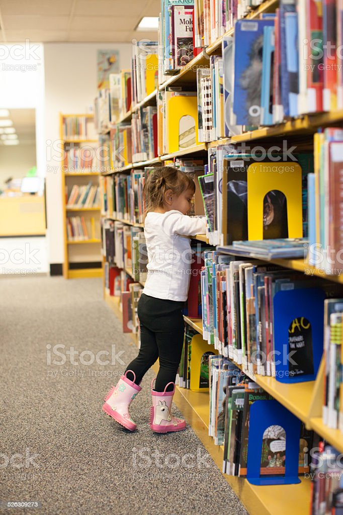 Preschooler Child is Picking a Book At the Library stock photo