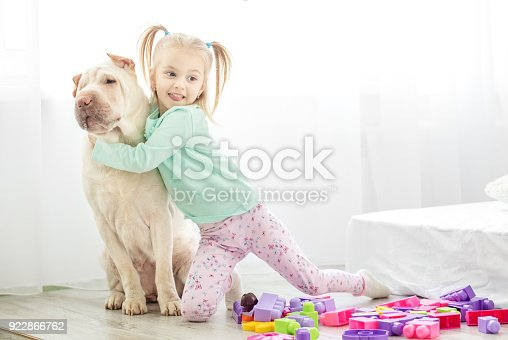 istock A preschooler hugs a big dog in the room.The concept of lifestyle, childhood, upbringing, family, pets. 922866762