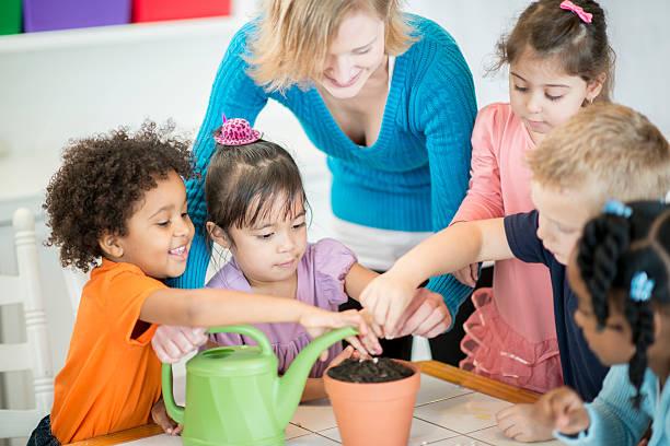 aprendizagem de sementes de plantas preschoolers - teacher school solo imagens e fotografias de stock
