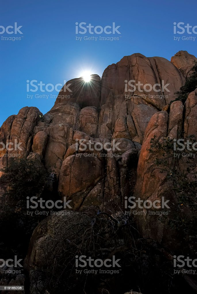 Prescott Sunflare stock photo