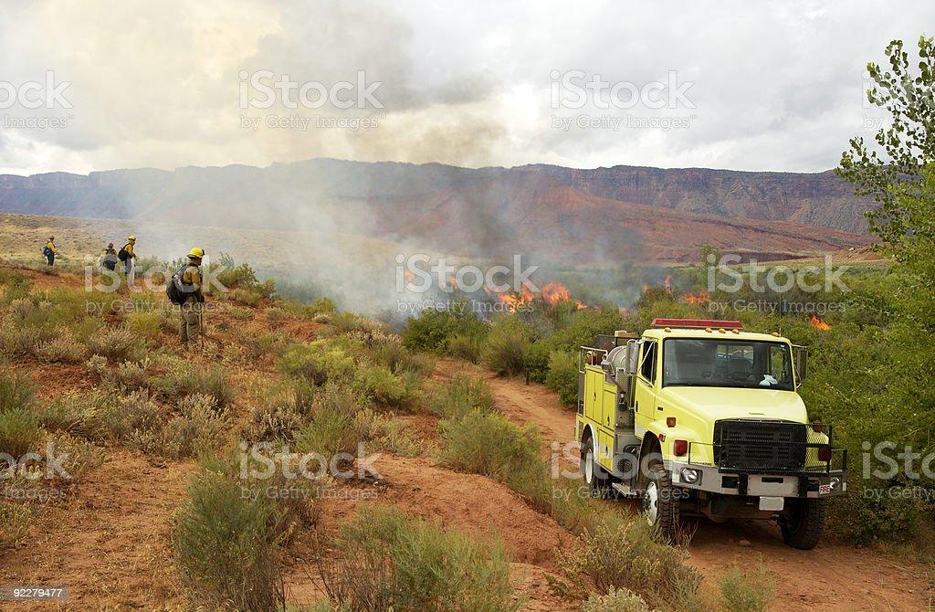 Prescribed burn stock photo