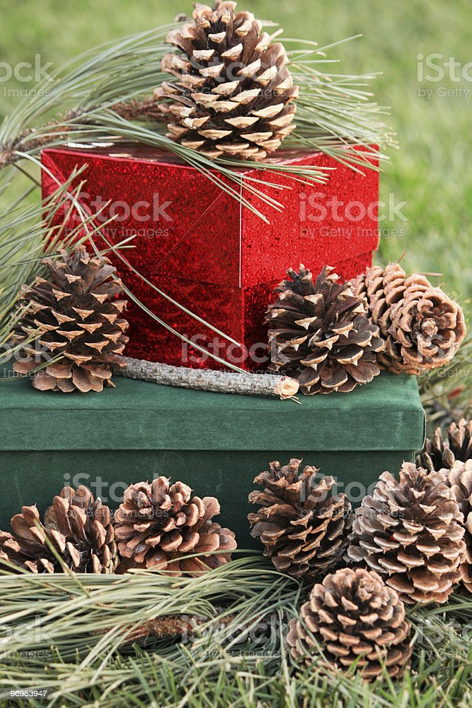 Presents and Pine Cones royalty-free stock photo