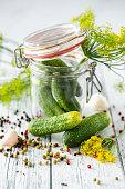 preserving cucumbers