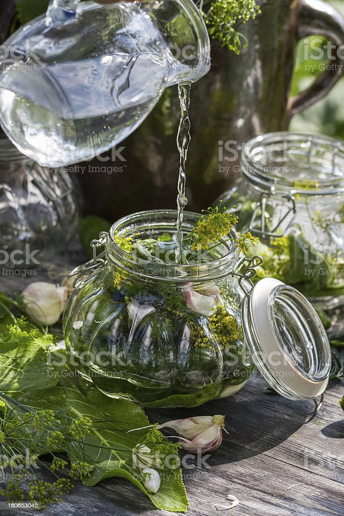 Preserving fresh cucumbers in a jar royalty-free stock photo
