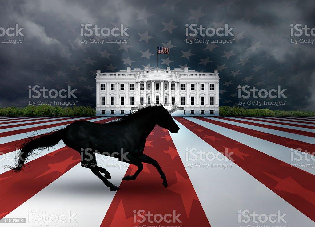 Presidential Dark Horse stock photo