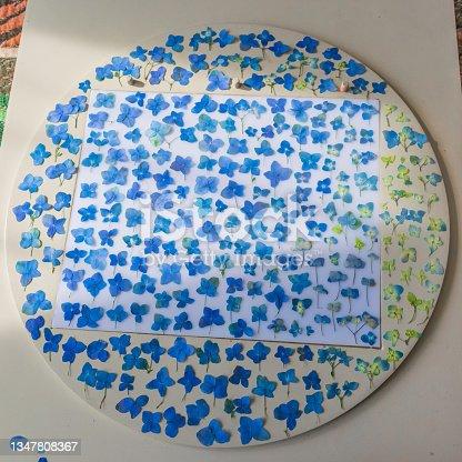 istock Pressed hydrangeas on white table 1347808367