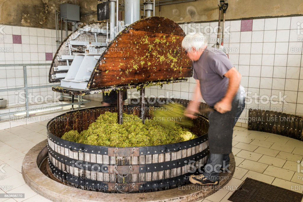 Pressing the Grapes in Pressoir Champagne stock photo