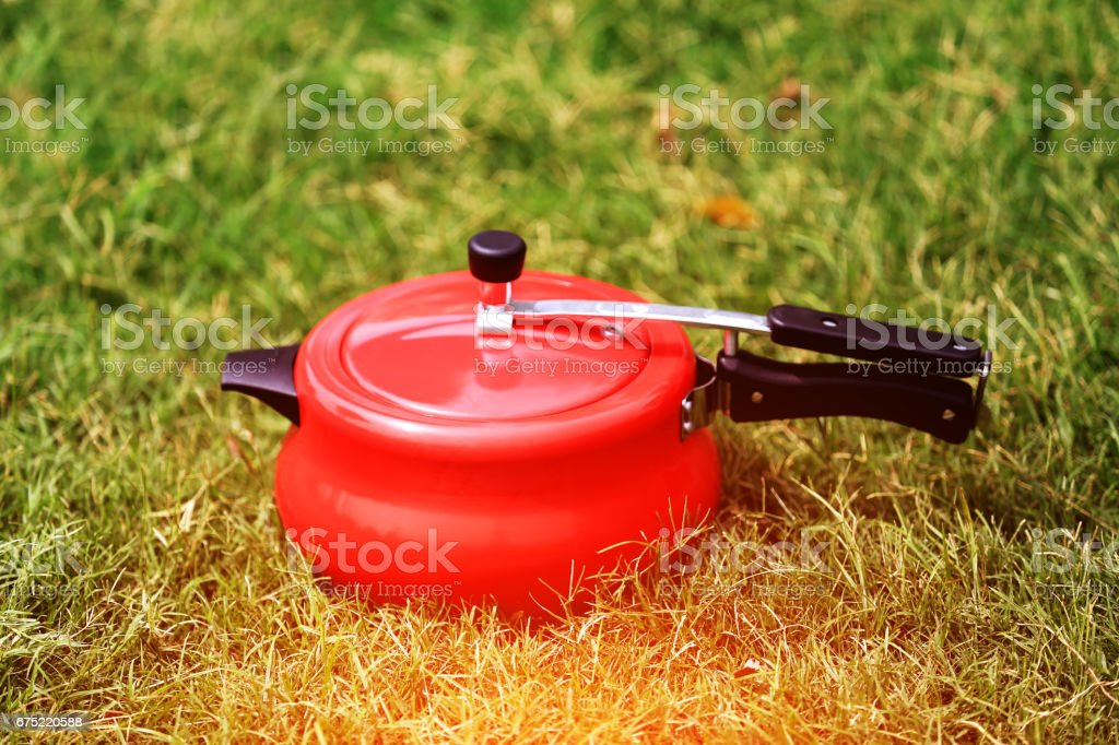 Pressure Cooker in the grass royalty-free stock photo