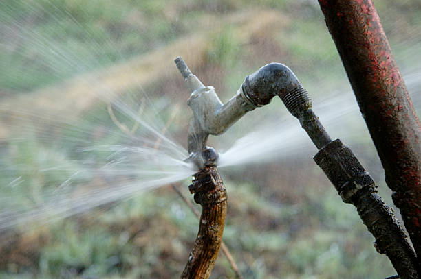 Pressure Gushing Water gushing faucet on field water wastage stock pictures, royalty-free photos & images