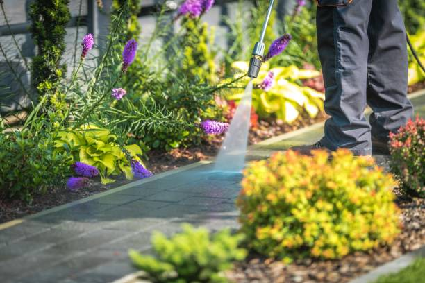 pressure washing garden path - high pressure cleaning stock photos and pictures