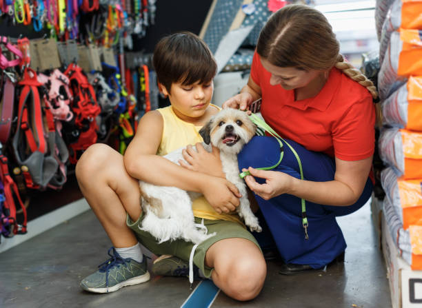 preteen boy with  little dog and mother  choosing pet accessories - pet shop and dogs not cats stock pictures, royalty-free photos & images
