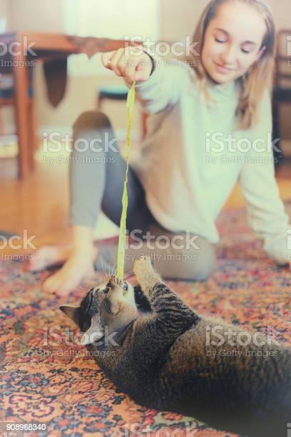 Preteen girl plays with cat picture id908968340?b=1&k=6&m=908968340&s=612x612&h=vc uf1dlwblugltwweeb924tidfggsokrsfhzlksnzi=