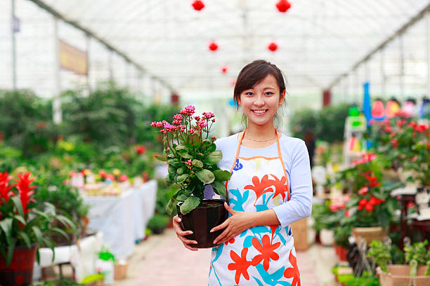 pretty asian Florist holding flower in the shop stock photo