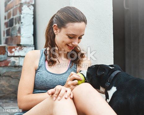A cute young brunette girl plays with her pet Staffordshire Bullterrier in her back yard.