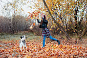 Pretty brunette woman playing with husky dog with leaves in autumn forest