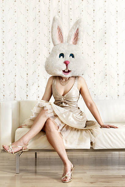 Pretty bunny stock photo
