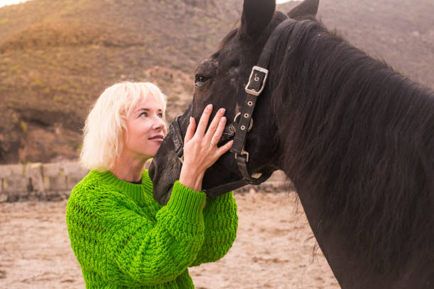 Pretty cute blonde woman middle age look her black big horse in the eyes to communicate her love for him. Horses therapy concept and loving animals for nice people outdoor Big smile caucasian east woman 35 years old hug her black horse in outdoor. Love and alternative friendly couple concept with natural lifestyle affective stock pictures, royalty-free photos & images