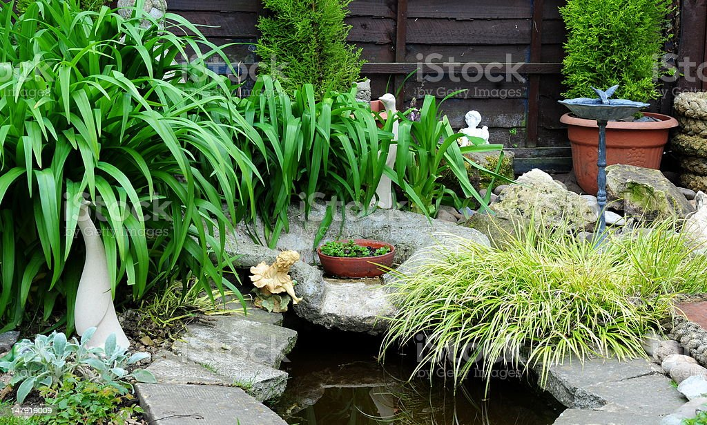 pretty garden pond stock photo