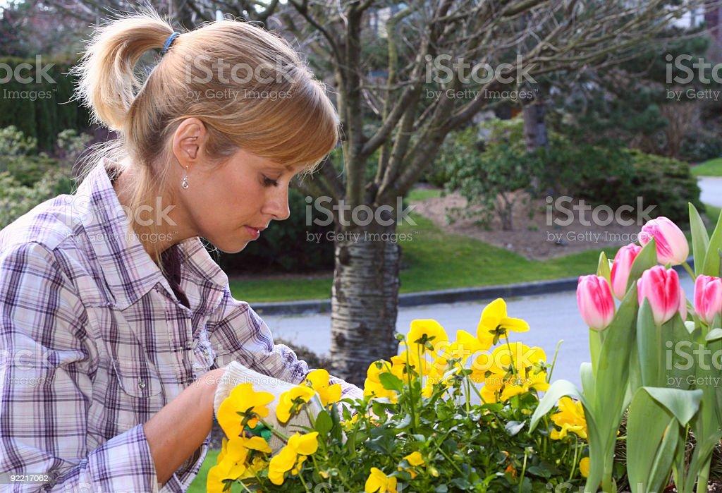 Pretty gardener royalty-free stock photo