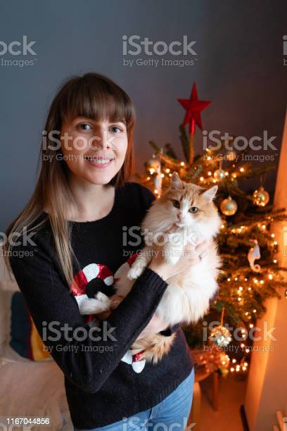 Pretty girl embraces fluffy red and white cat on christmas tree picture id1167044856?b=1&k=6&m=1167044856&s=612x612&h=pz7 4aops0w1br73loq3rhsguea9rlbn5opzutn 5pa=