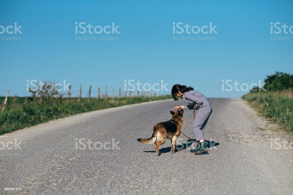 A pretty girl leads a dog next to her on the road royalty-free stock photo