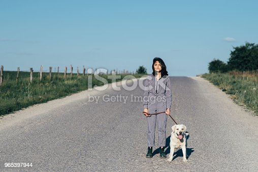 A Pretty Girl Leads A Dog Next To Her On The Road Stock Photo & More Pictures of Animal