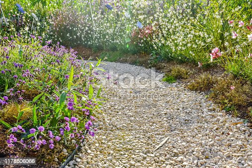 Garden layout with a small pebble path