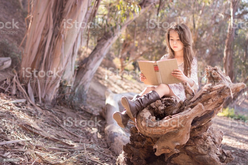 Pretty little girl outdoors quietly reading a book stock photo