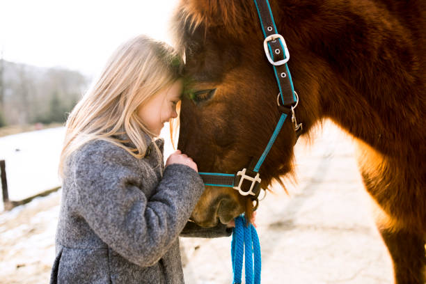Pretty little girl with horse on sunny winter day. Pretty little blond girl in gray coat with horse on sunny winter day. pony stock pictures, royalty-free photos & images