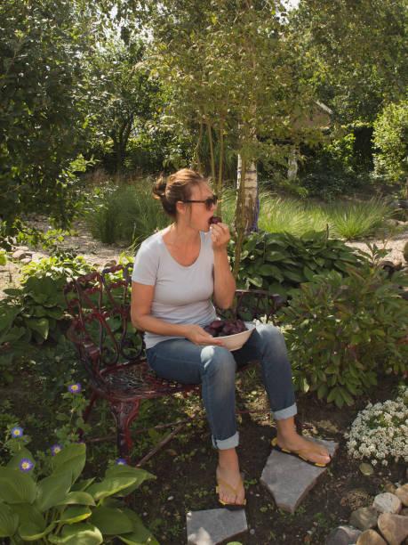 eine hübsche frau mittleren alters sitzt ruhig im garten und isst frische pflaumen. sommer, gesundes lifestyle-konzept. - pflaumen jeans stock-fotos und bilder