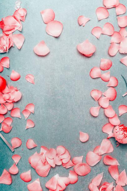 Pretty pink pastel petals of flowers on turquoise rustic background picture id890775518?b=1&k=6&m=890775518&s=612x612&w=0&h=qcolgihtsykqyfekjfbk6seq2rr3dycz zrreatco3o=