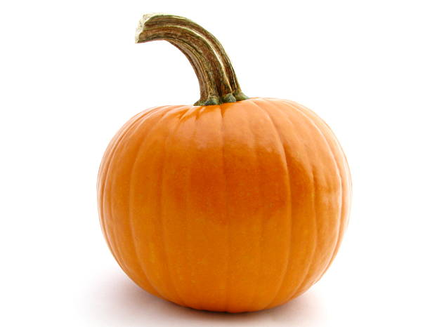 Pretty Pumpkin stock photo