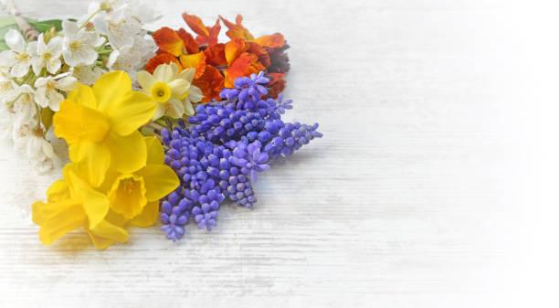 bonitas flores de primavera recogido según el jardín y dispuesto en una mesa - foto de stock