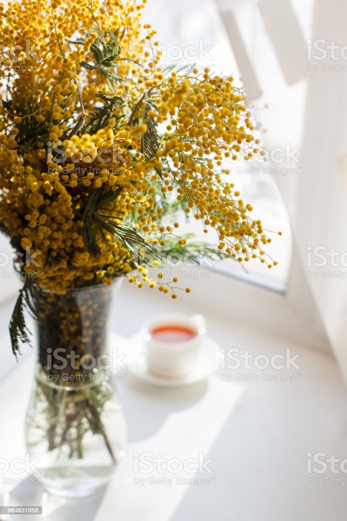 Pretty sunny morning tea and flowers. Morning summer or spring concept royalty-free stock photo