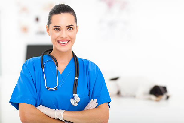 pretty veterinarian - assistant stock pictures, royalty-free photos & images