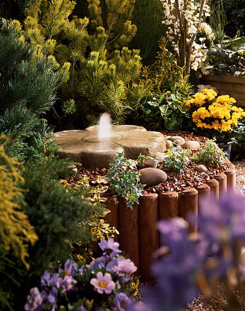 Schöne Brunnen in bunten Garten flowerbed – Foto