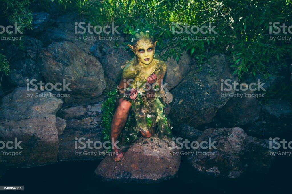 Pretty Water Nymph Fantasy Creature Near a Creek stock photo