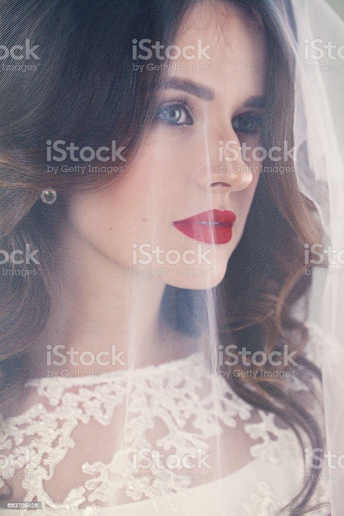 Pretty Woman Fiancee with White Veil stock photo