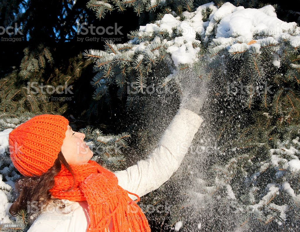 Pretty woman shaking the snow off a fir branch stock photo