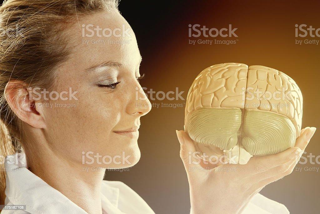 Pretty woman smiles at anatomical model of human brain stock photo