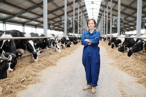 Bastante joven trabajador de la granja en ropa de trabajo de pie en pasillo largo de gran establo - foto de stock