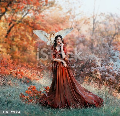 pretty young girl with black hair in cold forest, orange foliage of trees, fairy of autumn season in long red burgundy vintage dress with chic train, lady with white owl on shoulder, bloody sorceress.